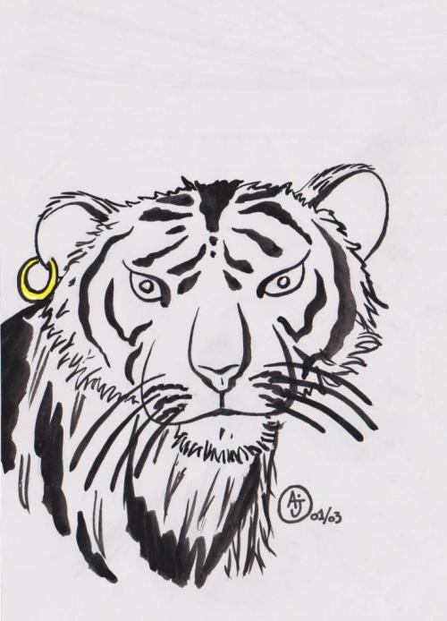 rock-and-tiger-001-1.jpg